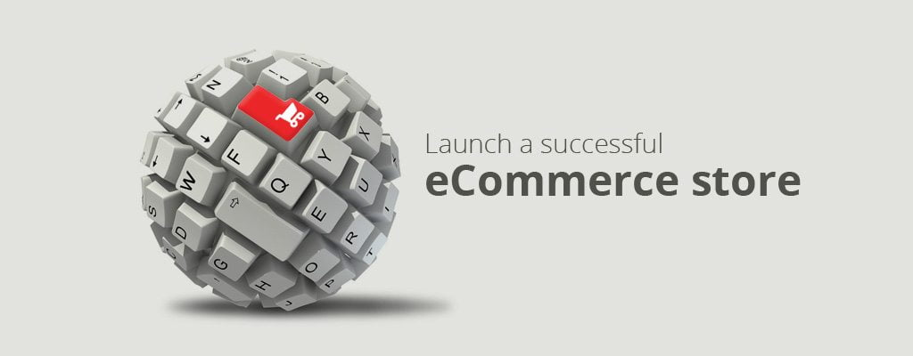 Attain Success In E-commerce World