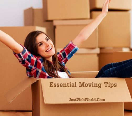Essential Moving Tips