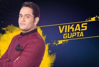 Vikas Gupta - Indian television producer