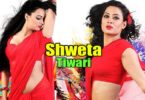 Shweta Tiwari (Indian Film Actress)