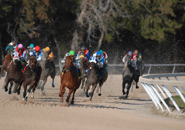 How To Win Big In 2019 Kentucky Derby