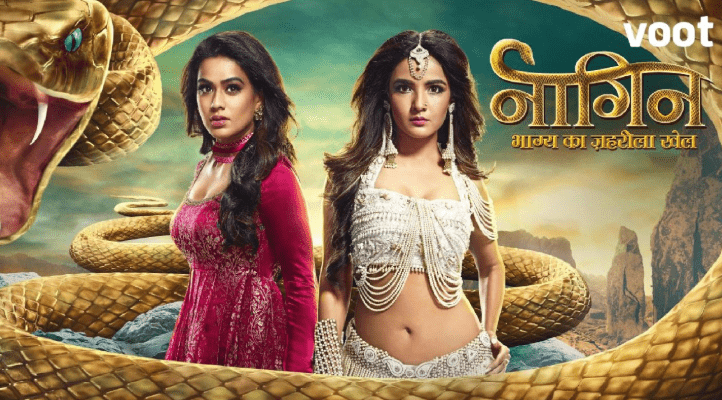 Naagin (TV series)